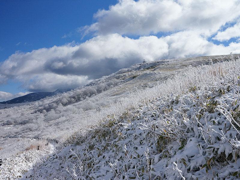 青空の元、雪が被って辺り一面真っ白