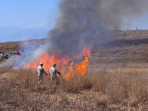 春先の茶色い草原に火を入れている様子