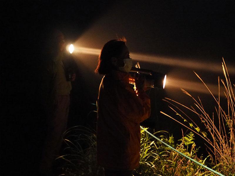 草原内に人がライトを向けて調査している
