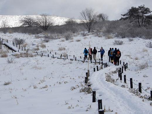 職員とボランティアが積雪のある遊歩道を巡回している