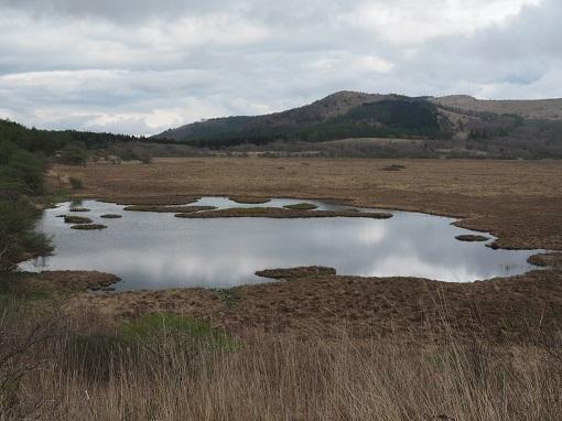 八島ヶ原湿原の八島ヶ池