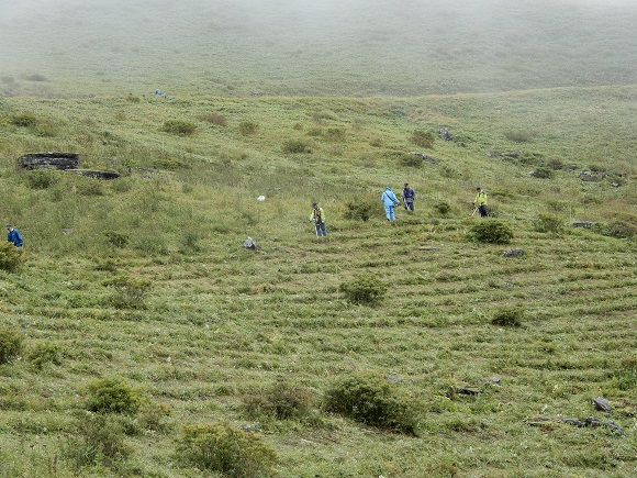 草原での刈取り作業