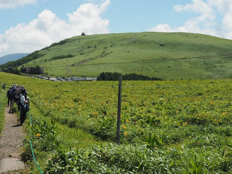 草原に設置された電気柵