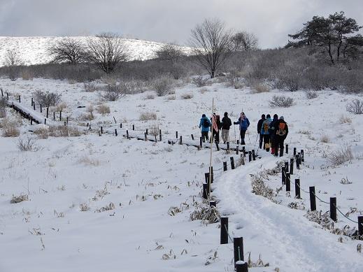 雪に覆われた湿原を巡回