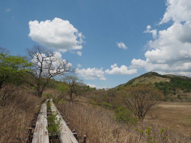 春先の八島ヶ原湿原